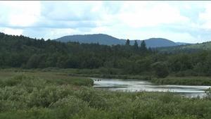 08-13-13: Adirondack Amendments