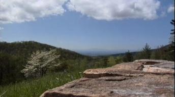 Shenandoah National Park Trust / Couples Counselors