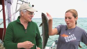 A Summer Salmon - Hailey Deritis