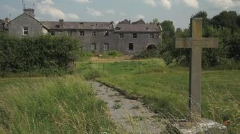 Ireland's Great Hunger and the Irish Diaspora
