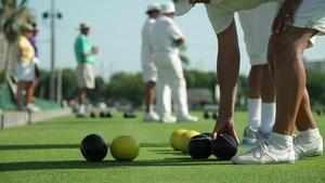 June 2014: Lawn Bowling