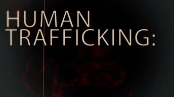 Human Trafficking: Report It