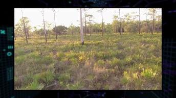 304: Heartwood Preserve