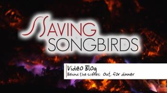 Saving Songbirds | Out for Dinner
