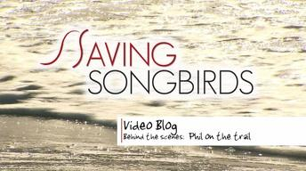 Saving Songbirds | Phil on the Trail