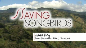 Saving Songbirds | Meet Christine