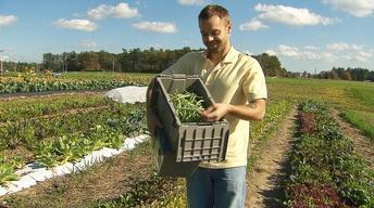 UNH-COLSA/Tuttle series | Growing Green