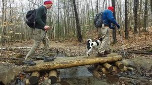 April Hike On Moose Mountain (Preview)