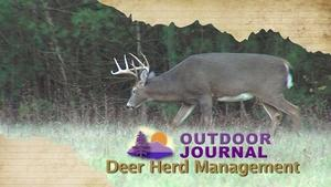 Deer Herd Management 2015