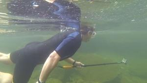 White River Snorkeling | Lake Sturgeon | Haystack Mountain