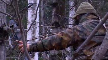 Bow Hunting,Bears,Adaptive Fishing,Fly-fishing