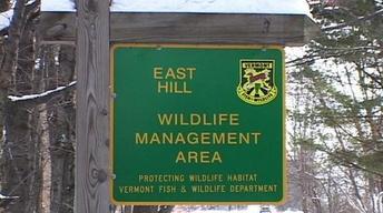 Wild Edibles, Duck Banding, Vermont's WMAs