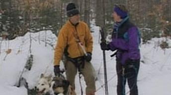 Skijoring, Winter Ecology, Ice Fishing