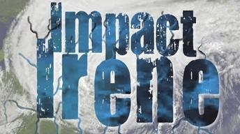 Impact Irene