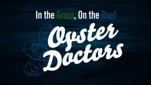 Oyster Doctors