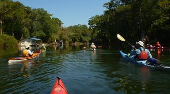 Paddling the Apalachicola River on RiverTrek 2012, Part 1