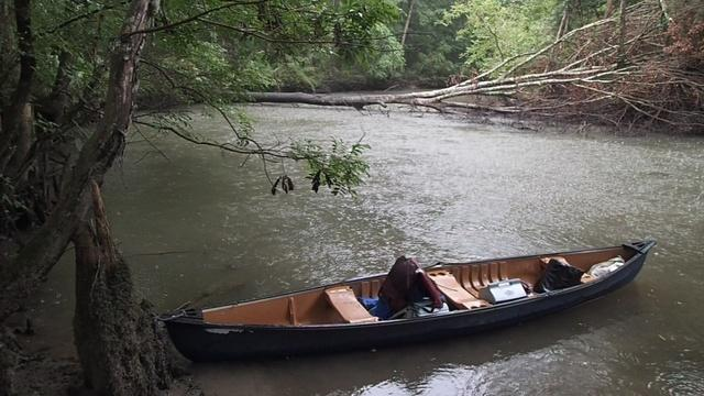 Upper Chipola River Kayak/ Canoe Adventure