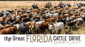 The Great Florida Cattle Drive: Unbroken Circles