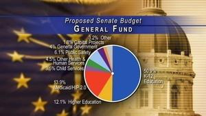 The State Budget - April 17, 2015