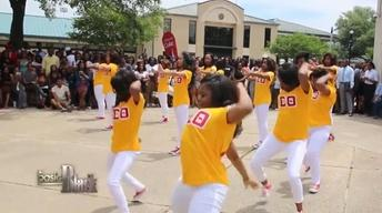 Black Fraternities and Sororities