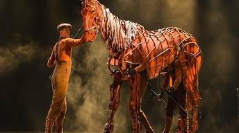 Oct. 16, 2012: War Horse