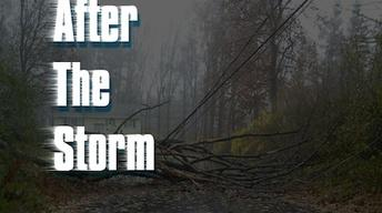 Oct. 30, 2012: After The Storm