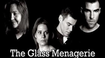 Feb. 13, 2013: Glass Menagerie