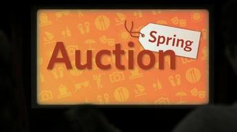 WGBH Spring Auction 2014