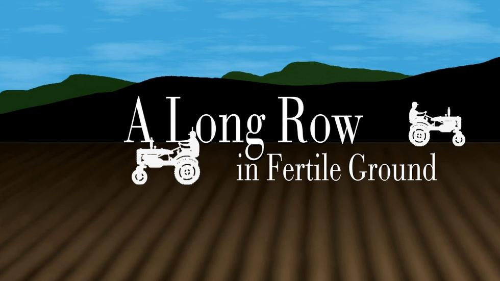 A Long Row in Fertile Ground image