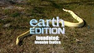Inundated: Invasive Exotics