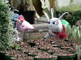 Count on It | Blossom and Snappy Go Gardening