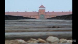 Surviving Auschwitz #1501