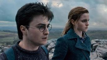 """The cast of """"Harry Potter and the Deathly Hallows, Part Two"""""""
