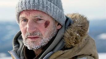 "Liam Neeson for ""The Grey"""