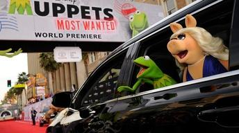 "The stars of ""Muppets Most Wanted"""