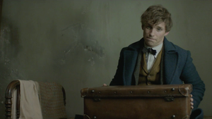 "The Stars of ""Fantastic Beasts and Where to Find Them"""