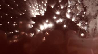 2013 YMA's: Heavens