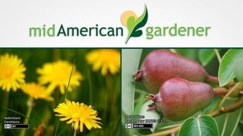 Mid-American Gardener with Dianne Noland - April 07, 2016