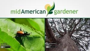 Mid-American Gardener with Dianne Noland - August 11, 2016