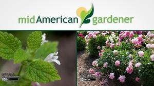 Mid-American Gardener with Dianne Noland - September 1, 2016
