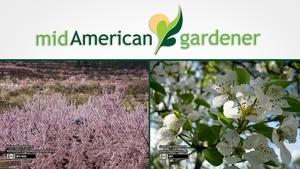 Mid-American Gardener with Dianne Noland - October 6, 2016