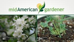 Mid-American Gardener with Dianne Noland October 20, 2016