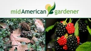 Mid-American Gardener with Dianne Noland January 26, 2017