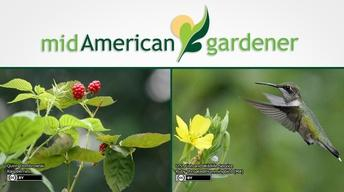 Mid-American Gardener with Dianne Noland February 2, 2017