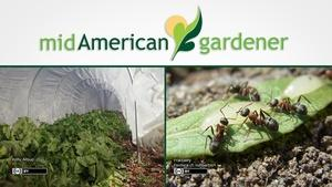 Mid-American Gardener with Dianne Noland March 16, 2017