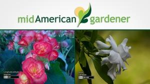 Mid-American Gardener with Dianne Noland March 30, 2017