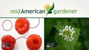 Mid-American Gardener with Dianne Noland April 6, 2017
