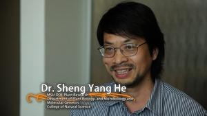 Sheng Yang He - University Distinguished Professor