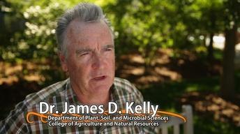James D. Kelly - University Distinguished Professor