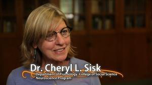 Cheryl L. Sisk - University Distinguished Professor